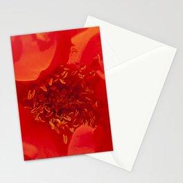 Majestic Fiery Red Flower Macro Photo Stationery Cards