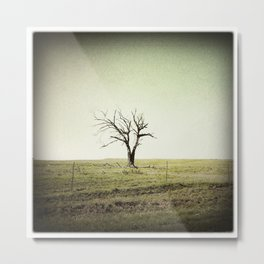 Tree 2, Flint Hills, Kansas Metal Print