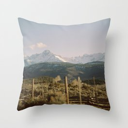 Road to Telluride Throw Pillow