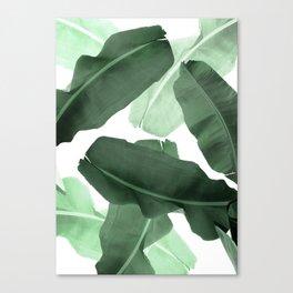Green Banana Leaf Canvas Print