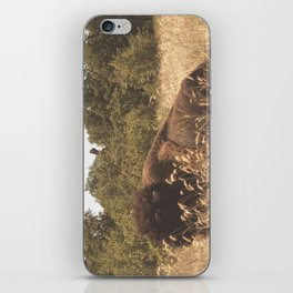 August iPhone Skin