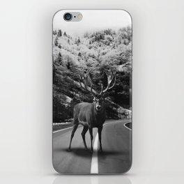 Deer Walker Road iPhone Skin