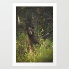 Black Bear Smile Art Print