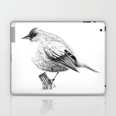 Pajaro Laptop & iPad Skin