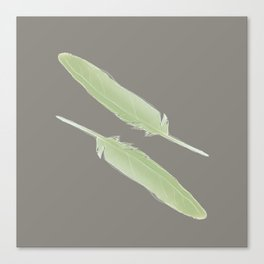 Feathers by Abi Roe Canvas Print