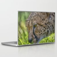 cheetah Laptop & iPad Skins featuring Cheetah by Darren Wilkes Fine Art Images