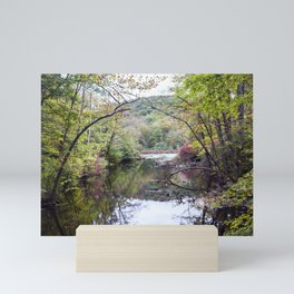 River of the Woodlands 03 Mini Art Print