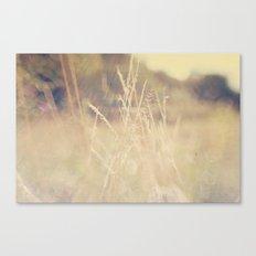 Hazy Days of Summer Canvas Print