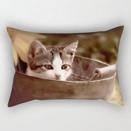 Kitten in tub Rectangular Pillow