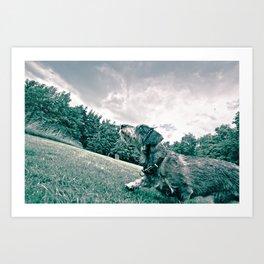 DACKEL DOG #17 Art Print