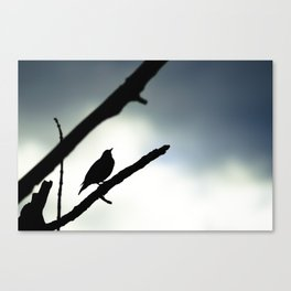 Silhouetted Singer Canvas Print