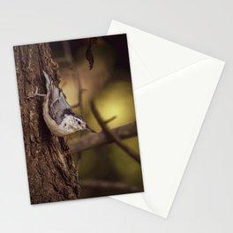 Nuthatch Morning Stationery Cards
