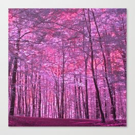 purple forest V Canvas Print