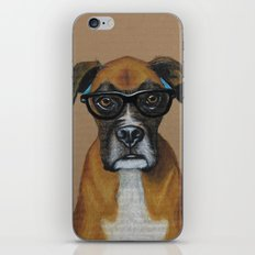 Hipster Boxer dog iPhone & iPod Skin
