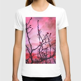 Dark Branches Red Buds And Fiery Sky T-shirt