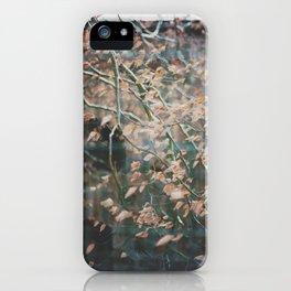 linz 16 iPhone Case