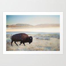 The Anonymous Buffalo Art Print