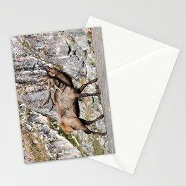 Wapiti Bugling (Bull Elk) Stationery Cards