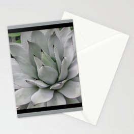 In the Conservatory Stationery Cards