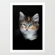 Kitten Art Print
