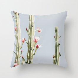 Cereus Cactus Blush Throw Pillow