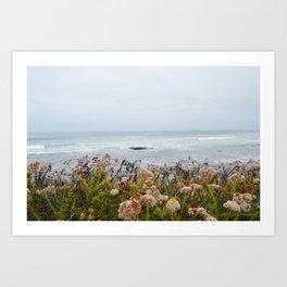 Crystal Cove State Park, Newport Beach, California  Art Print