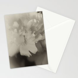 floating in monotones Stationery Cards