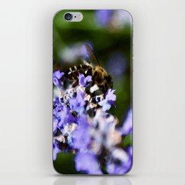 Bee on lavander iPhone Skin