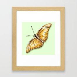 Papillon jaune Framed Art Print