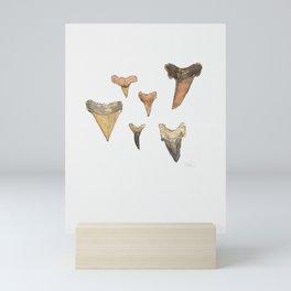 Shark Teeth Study Mini Art Print