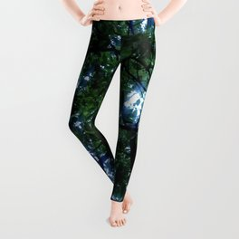 Nature and Greenery 21 canopy Leggings