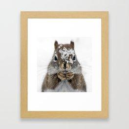 Squirrel! Framed Art Print