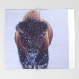 Bison Moving Through the Snow in Yellowstone National Park Throw Blanket