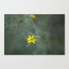 Dream time Canvas Print