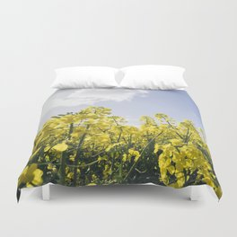 Field of Rapeseed (Canola) against sunlit blue sky. Norfolk, UK. Duvet Cover
