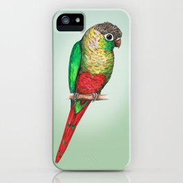 Conure with a heart on its belly iPhone Case