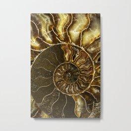 Earth treasures - Brown and yellow ammonite Metal Print
