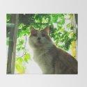 Marmalade Window Kitty by jillcm