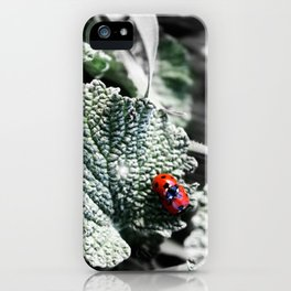 Lady Bugs Caught In Action iPhone Case
