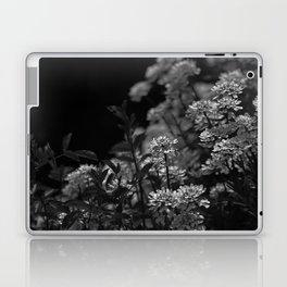 Edelweiss by Moonlight Laptop & iPad Skin