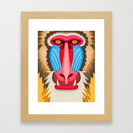 Baboon Head Framed Art Print