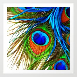 BLUE PEACOCK EYE FEATHER DESIGN Art Print