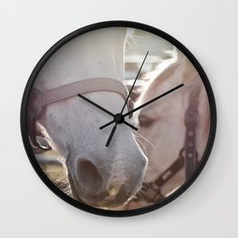 Majestic Pons Wall Clock