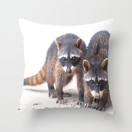 Cute wild Racoons in Costa Rica Throw Pillow
