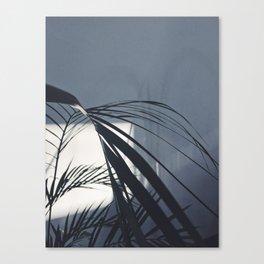 Plant leaves Canvas Print