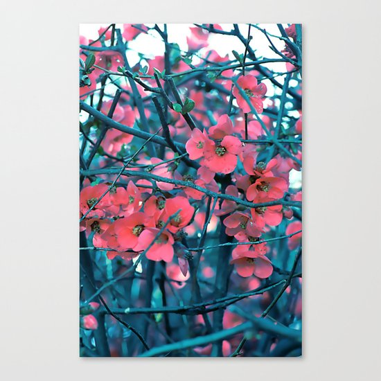 Floral abstract(61) Canvas Print