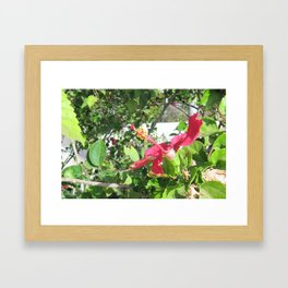 The Mount of Bee-atitudes Framed Art Print