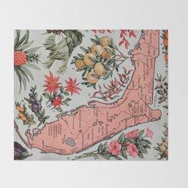 Vintage Map of Florida (1917) Decke
