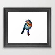 Nonorganic Sparrow Framed Art Print