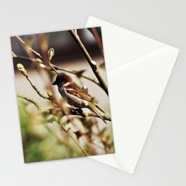 759 Stationery Cards